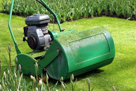 Lawn Movewr